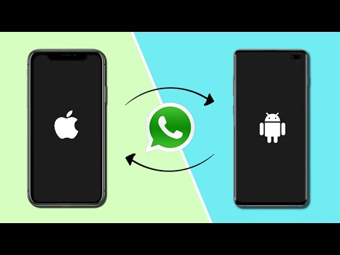 mobiletrans whatsapp