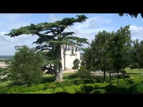 #Patrimoine de France le chateau Royal d'#Amboise