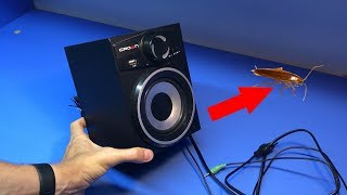 Ремонт компьютерной акустики CROWN CMBS-160 с сюрпризом внутри! Слабонервным не смотреть!