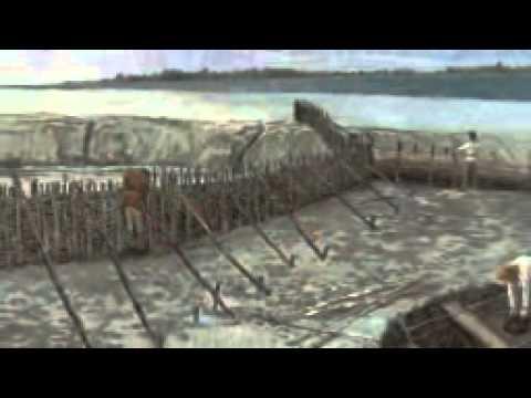 Medmerry  sea defence scheme