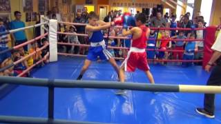 Детский турнир по боксу Открытый Ринг 05.2016