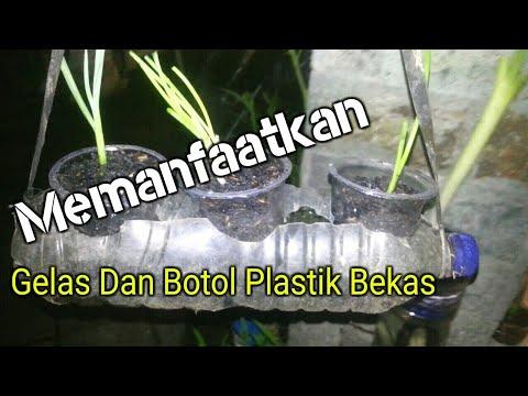 Cara Membuat Netpot Gelas Plastik Dan Botol Gratis Untuk Hidroponik Celup