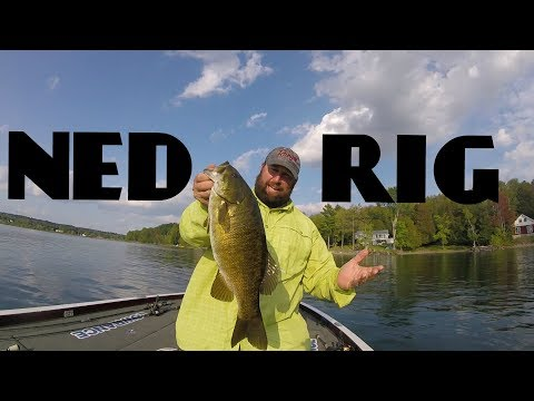 HOW TO NED RIG: COMPLETE TUTORIAL- HEADS, BAITS, TACKLE, BIG SMALLMOUTH BASS