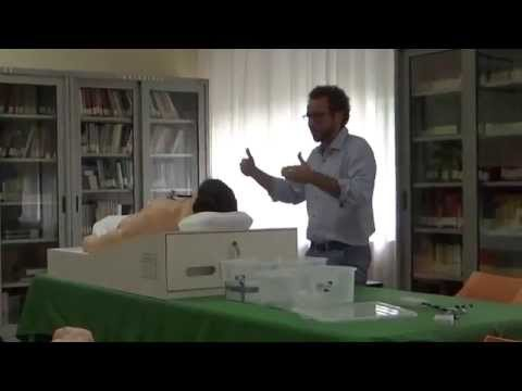 """2° Giornata del Collegio Lorenzo Valla - Presentazione """"Harvey"""""""