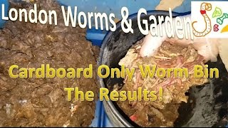 Worm Bin Experiment Cardboard Only Results