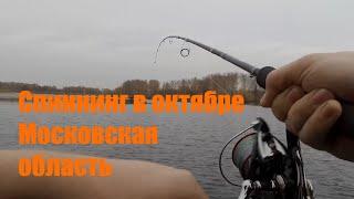 Рыбалка на спиннинг в конце октября в Московской область 2020