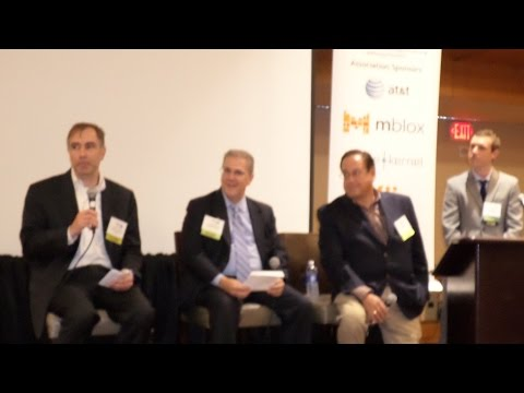 Panel Part 2 Annual Analyst State of Wireless Industry
