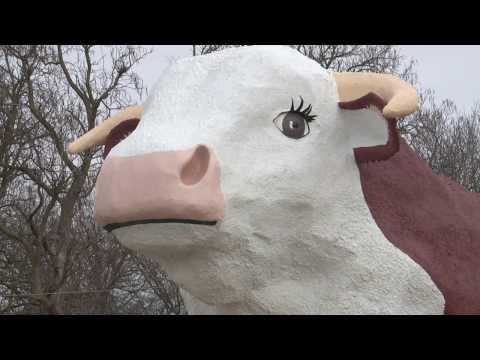 Albert the Bull SUper Bowl PKG
