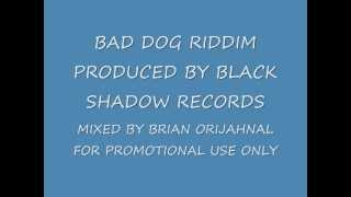 Download BAD DOG RIDDIM MIX BLACK SHADOW RECORDS MP3 song and Music Video
