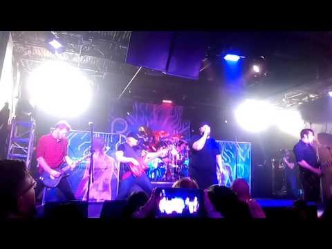 Parabelle - My Damsel (Live Houston)