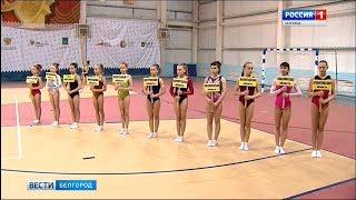 Участниками юбилейных соревнований по спортивной гимнастике стали более 700 человек