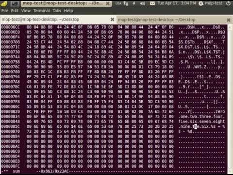 Using hexedit to edit elf file - YouTube