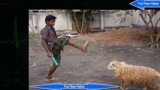 Most Funny Videos Ever Seen In The World 2017 (FunTime Vidios)