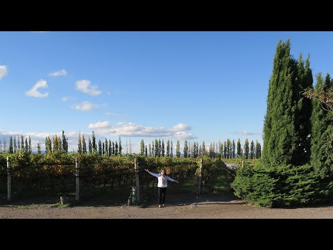South America Vlog: Mendoza, Argentina + Wine Country Tour!