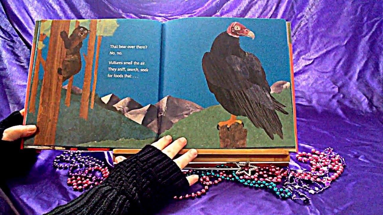 Vulture View Readaloud Fun Youtube