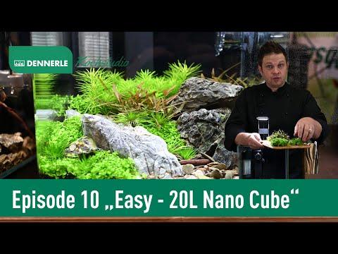 Einrichten eines 20L Nano Cube | Aquarium nach Rezept Epsiode 10 | DENNERLE