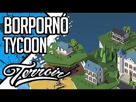 BORPORNÓ TYCOON | TERROIR (magyar/hun gameplay)