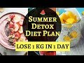 Summer Detox Diet Plan | How to Lose Weight Fast 1 Kg in 1 Day | Detox Diet Plan for Weight Loss