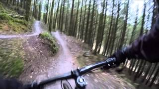 Bodmin Beast, Cardinham Woods Cornwall, Singletrack MTB Mountain Bike Trail