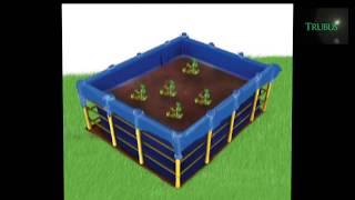 Cara buat kolam terpal belut