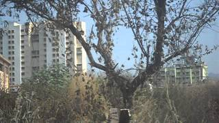 Project video of Bhoomi Gardenia I