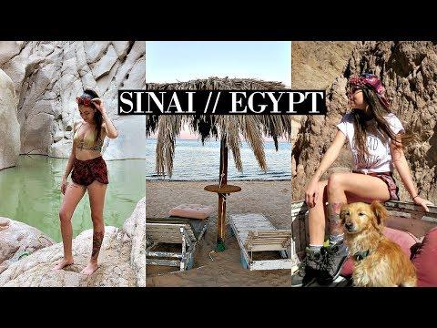 I'm Back! Sinai, Egypt Travel Vlog