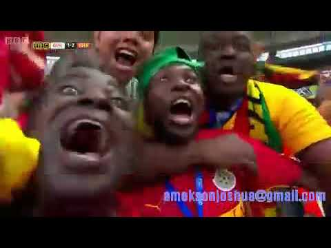 Asamoah Gyan World Cup Goals