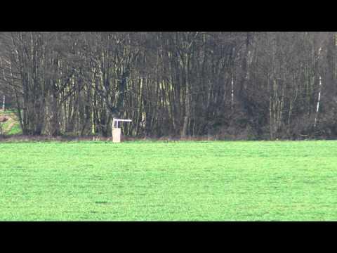 Bullet Flight Vortex HD