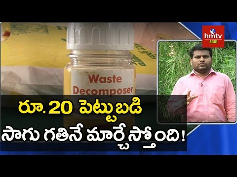 Organic Waste Decomposer Preparation | hmtv Agri