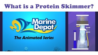 What is a Protein Skimmer (What Is It?: Animated Series)