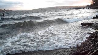 Waves On Clarke Beach Mercer Island  1 21 2011