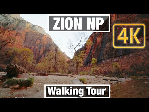 4K City Walks: Zion NP Utah Riverside Walk Trail Virtual Walk Walking Treadmill Video free tour