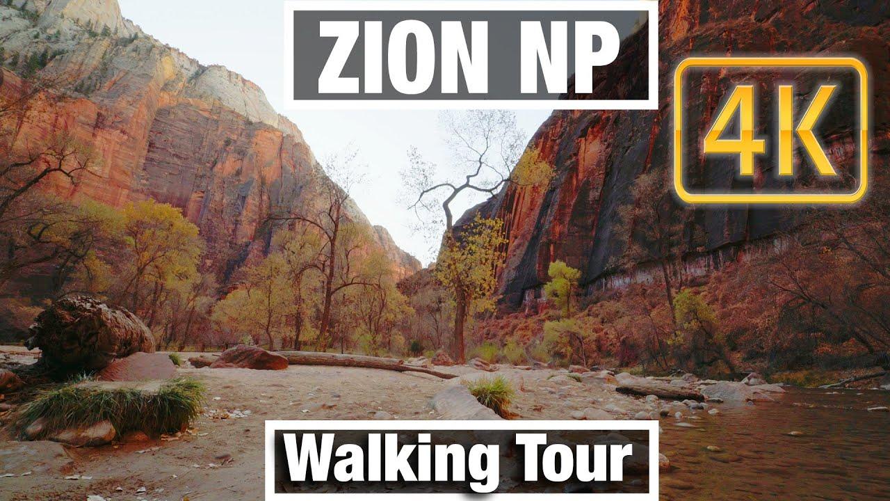 4K City Walks: Zion NP Utah Riverside Walk Trail - Virtual Walk Walking Treadmill Video free tour