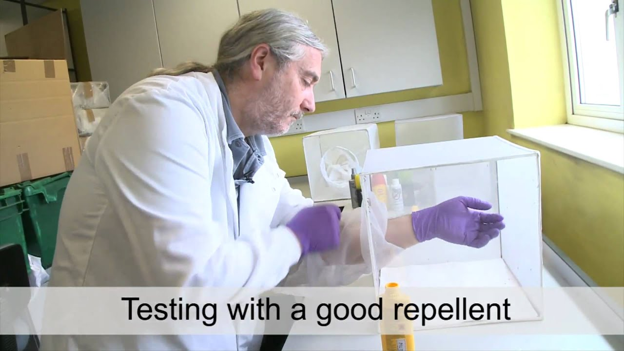 Which?: How we test insect and mosquito repellents - YouTube