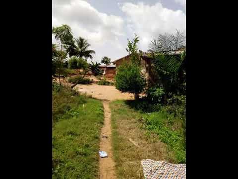 AGBEMAPLE DE TOSSOUHON (BENIN)