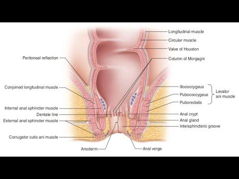 Porn pic Olichka masturbating to orgasm