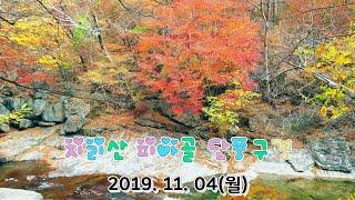 지리산 피아골 단풍구경_2019. 11. 4(월) 단풍…