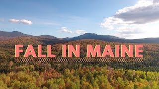 FALL IN MAINE - Free Camping in the White Mountains