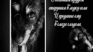 Л. Андреев. Рассказ  Кусака