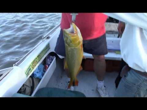 Pesca en Rio Parana, Reserva del Isoro en Goya y Armados en Santa Elena