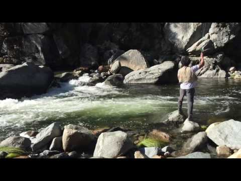 South Fork American River Fly Fishing