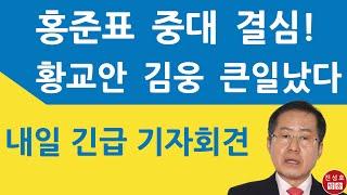 """홍준표 내일 긴급 기자회견! """"날 황교안과 엮…"""