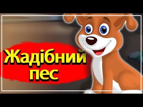 Жадiбний пес | Казки на ніч для дітей | Казки українською мовою