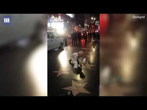 Moment Pink gets on hands and knees to clean Hollywood star