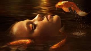 Песня/Клип/Золотые рыбки.