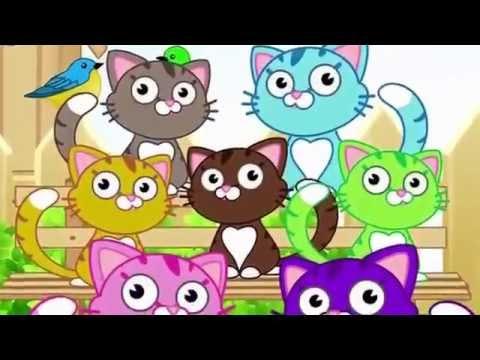IL GATTO PUZZOLONE - canzoni per bambini