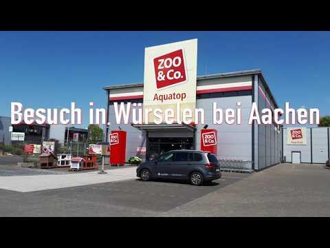 Meerwasser und Süsswasser bei Aquatop in Würselen bei Aachen