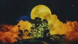オラクルカードアンバサダー愛川SHOWがスピリチュアルとお仕事、人間関係、パートナーシップ、恋愛、健康、引き寄せの法則など、オラクルカードを使って解説や ...
