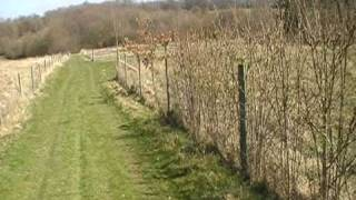Land for sale at Salehurst East Sussex