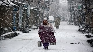 Himachal Pradesh becomes a white delight with snowfall!